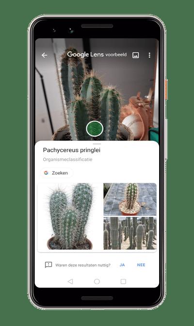Google Lens smartphone